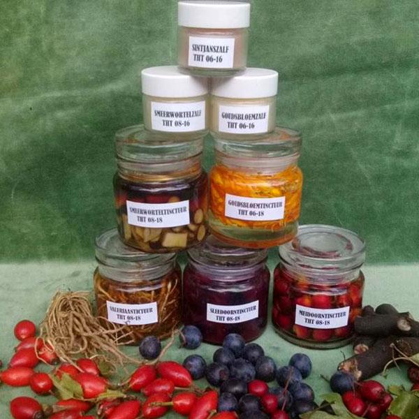 EHBO-uit-de-natuur-workshop-cursus-zelf-ehbo-producten-maken-smeerwortelzalf